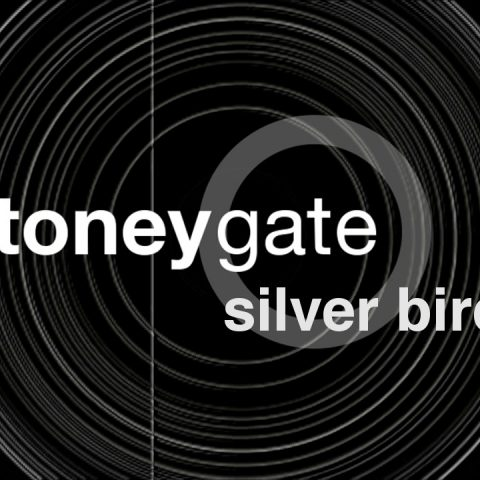 Video Silver Bird by Stoneygate