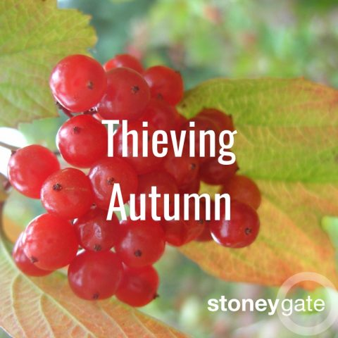Thieving Autumn: a folky, nostalgic playlist for the season of mists and mellow fruitfulness.