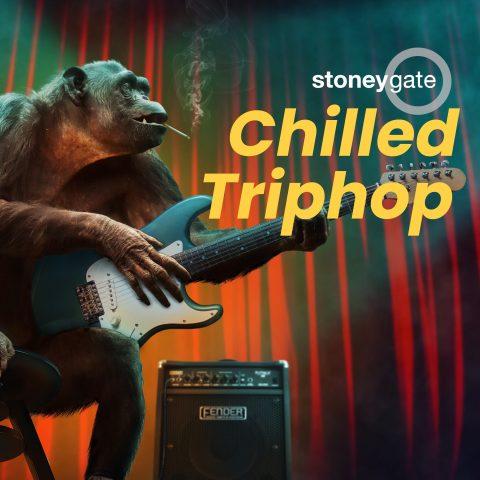 Trip-hop Playlist cover art